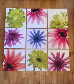 9 Flowered Canvasses