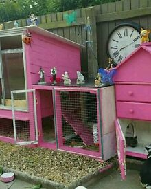 Rabbit hutch and rabbits