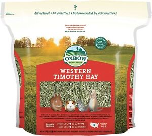 BIG Timothy Grass Hay, Oxbow, Rabbit Guinea Pig food