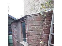 Garden shed WOODSTORE.........FREE
