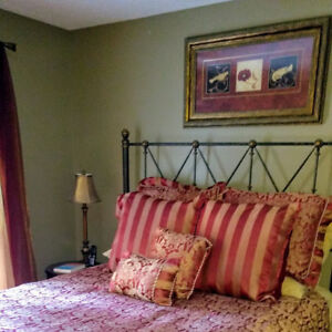 Beautiful Queen Headboard/Footboard and Bed Frame