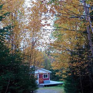 2 bdm cabin for sale