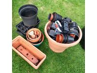 FREE Various plant pots and trays