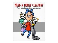Cleaning/ ironing service