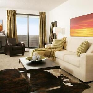 Large 1 Bedroom Apartments near Oxford & Richmond in London