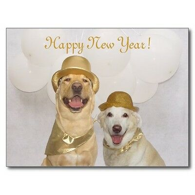 """*Postcard-""""The 2 Dogs"""" -Happy New Year!- (See Scans) (B-211)-"""