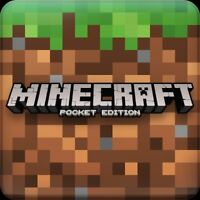 Is your teen daughter looking for a Minecraft buddy?