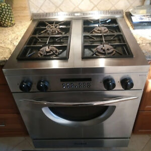 Professional Gas Range