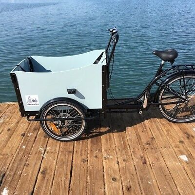 Manual Cargo Box Bike Bakfiet Bicycle Family Kids Trailer