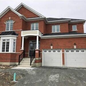 Beautiful 4-bedroom home available for lease in Newcastle
