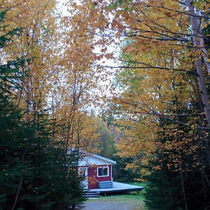 2 bedroom cabin for sale in George's Lake, Newfoundland