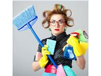 DOMESTIC AND OFFICE CLEANING BUSINESS WEBSITE