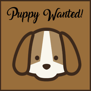 Young dog wanted