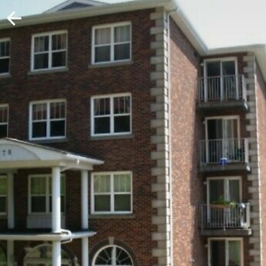 Roommate for 1 bedroom in a  2 bedroom apartment Avail.Sept. 01