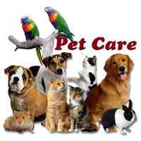 Loving Pet Care Provider