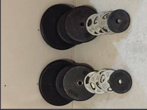 145lbs cast iron standard weights