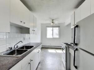 *FREE RENT* Beautiful Reno'd Bachelor Suite Near Oliver!