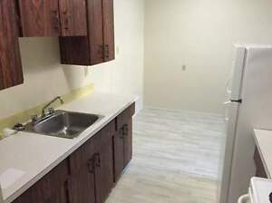 *INCENTIVES* Reno'd Bachelor Just Blocks From Whyte Ave! ~ 205