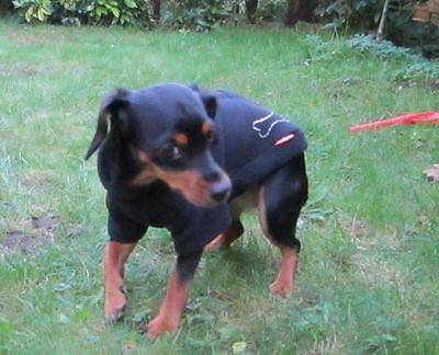 Hunde Fleece Pullover warm Pulli schmale Rasse Chihuahua Yorkshire ToyTerrier