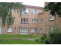 2 bedroom flat in Thornaby, Stockton-On-Tees, Thornaby, Stockton-On-Tees, TS17