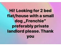 2 bes flat wanted