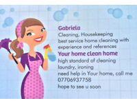 Experienced, hardworking Housekeeper