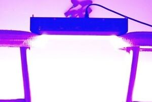 Commercial LED Grow Light! HYDROPONIC, FULL SPECTRUM+ BRIGHT+