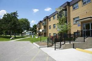 Beautiful Large 2 Bedroom at 266 Kingswood Estates