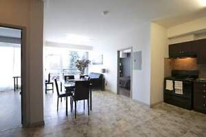 275 Larch St. double occupancy units available steps from WLU! Kitchener / Waterloo Kitchener Area image 3