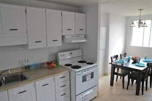 Large 2 Bedroom near Cedar & St. Andrew in Cambridge!