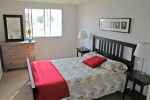 Large 1 Bed near Cedar & St. Andrew in Cambridge-Great Location!