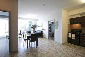 The MARQ at 275 Larch -Beautiful 2bed Suites! Great for Sharing! Kitchener / Waterloo Kitchener Area image 8