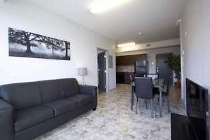 The MARQ at 275 Larch -Beautiful 2bed Suites! Great for Sharing! Kitchener / Waterloo Kitchener Area image 3