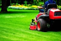 Grass Cutting , flower bed maintenance and more