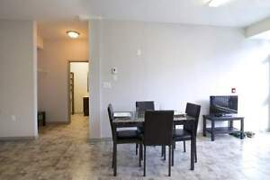 The MARQ at 275 Larch -Beautiful 2bed Suites! Great for Sharing! Kitchener / Waterloo Kitchener Area image 10