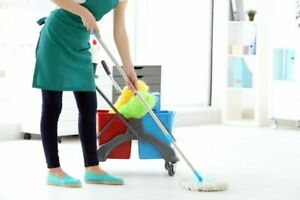 House cleaner - Car or Drivers licence required $16/hr to start