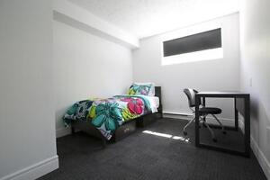 SUMMER SUBLET (MAY-AUGUST 2017) Kitchener / Waterloo Kitchener Area image 4