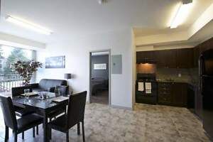 275 Larch St. double occupancy units available steps from WLU! Kitchener / Waterloo Kitchener Area image 2