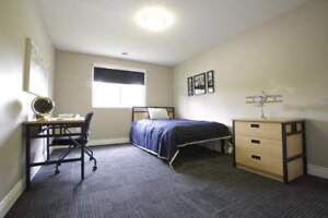 Cheap Summer Sublease in The MARQ, London (Females only)