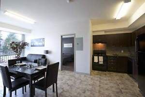 The MARQ at 275 Larch -Beautiful 2bed Suites! Great for Sharing! Kitchener / Waterloo Kitchener Area image 4