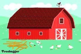 Lock up/ barn storage space