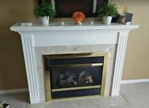 Sold .....Gas Fireplace insert and mantle