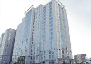 1 bdrm Sublet (Female) available in a 4 bedroom apartment