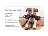 Looking for a lead...? Dog Walking Services in and around Bristol