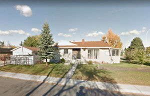 5 BDRM HOUSE IN BRENTWOOD - Available Nov 1st