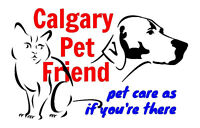 Pet & house sitting, cat & small dog boarding in Bridgeland home