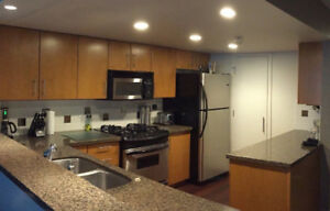 Complete Kitchen (cabinets, granite, cupboards, appliances)