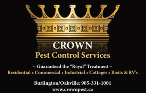 Pests, Rodent & WildLife Control Services