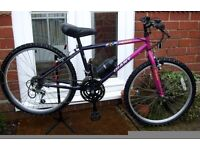 "*GIANT JUNIOR BOYS / GIRLS 24"" WHEEL 18 SPEED BIKE - CLEANED & SERVICED - EXCELLENT USED CONDITION**"