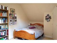 Double Ensuite in friendly 3 bed Flat - Winton